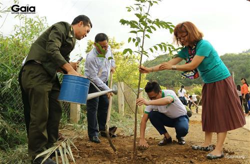 oàn đại biểu trồng cây tại Trường PTDTBT - Tiểu học Vừ A Dính.