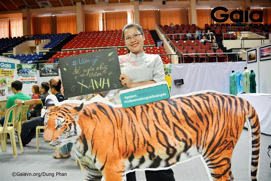 Chụp ảnh với mô hình Hổ Đông Dương