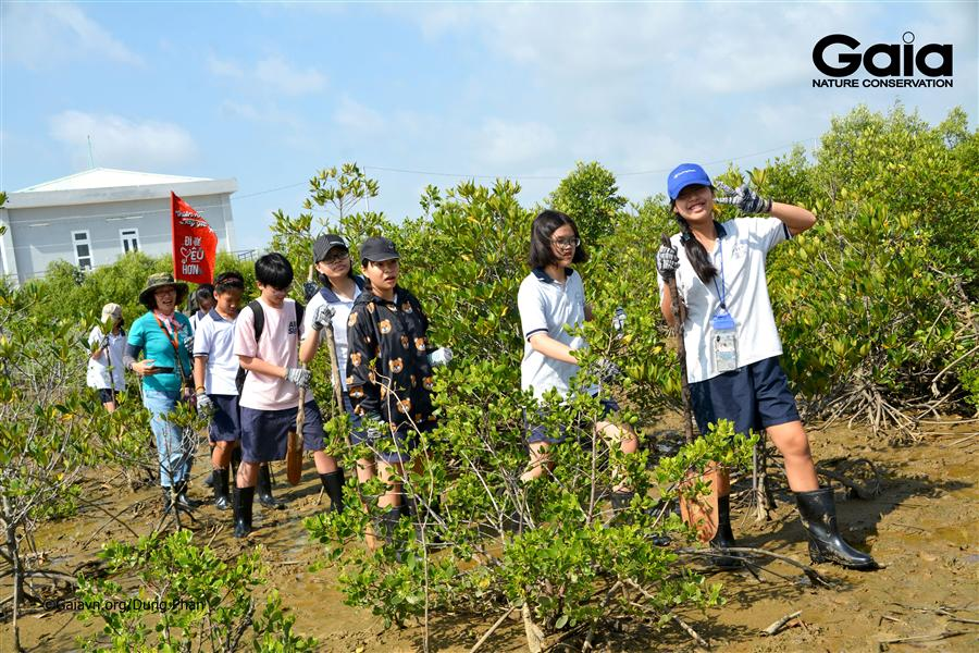 Hào hứng trồng rừng khôi phục hệ sinh thái rừngngập mặn Cần Giờ.