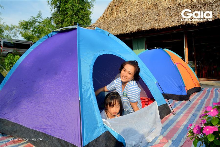 Dựng lều trại giữa trang trại thanh long.