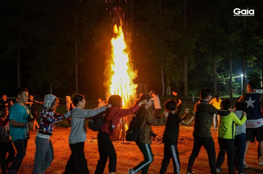 Hào hứng với lửa trại giữa rừng.