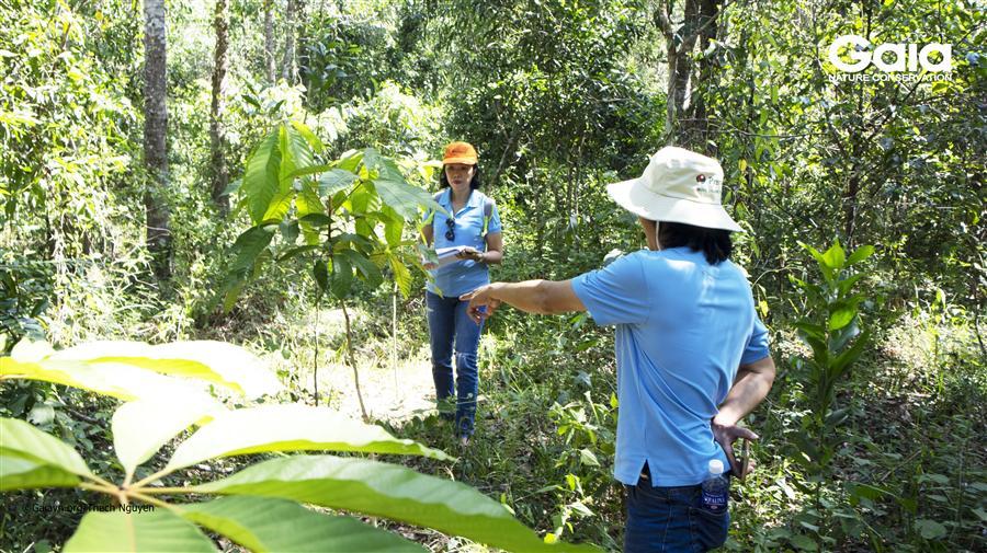 Cán bộ Premier Oil thảo luận, nghiên cứu khu rừng.