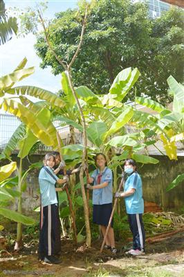 Các em học sinh khối 7 bên cái cây mình vừa trồng.