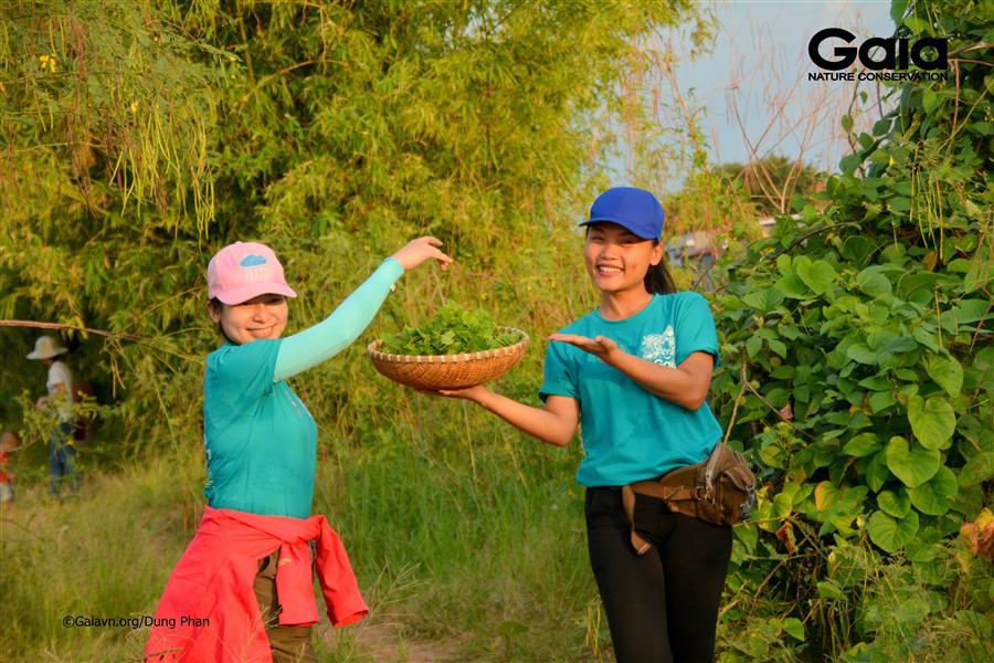 Vui thích tham quan vườn Thanh Long tại Khu Du lịch Sinh thái Ba Na.