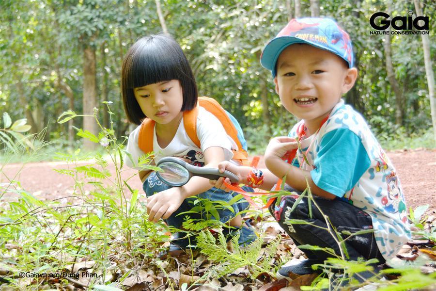 Khám phá thực vật trong rừng.