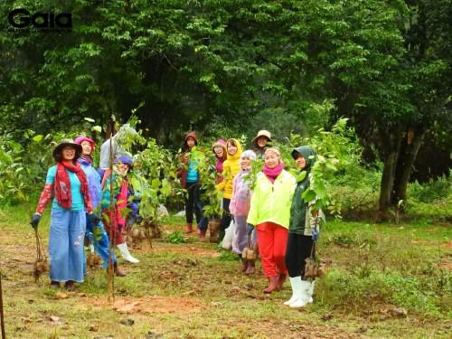 Khẩn trương vận chuyển cây đến điểm trồng rừng