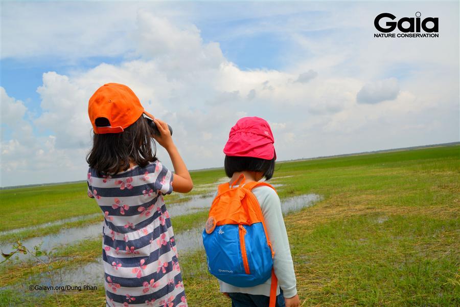 Quan sát toàn cảnh Vườn quốc gia Tràm Chim.