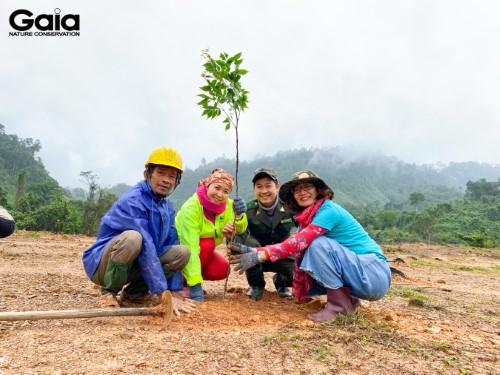 Giám đốc Trung tâm Bảo tồn thiên nhiên Gaia trồng cây cùng Cán bộ Vườn quốc gia Bạch Mã và doanh nghiệp ủng hộ trồng rừng