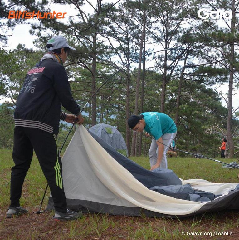 Học cách dựng lều trải nghiệm ngủ đêm trong rừng