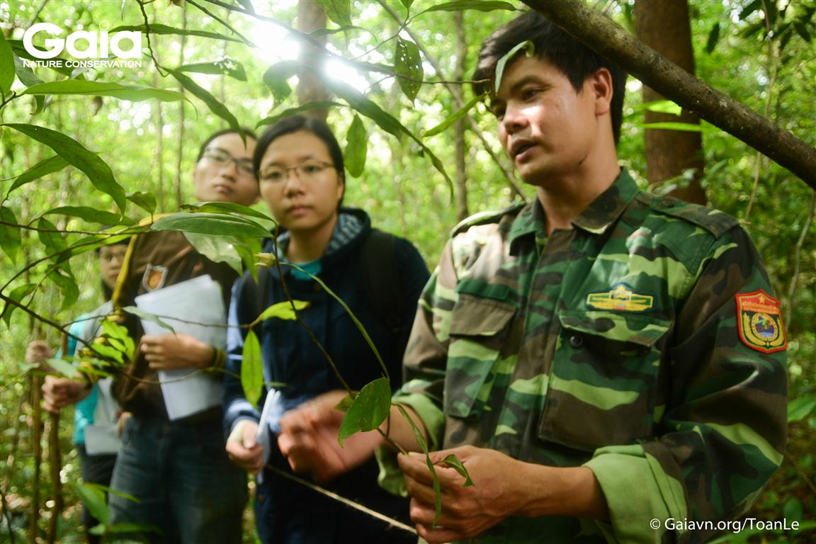 Anh Kiều Đình Tháp – Giám đốc Trung tâm Giáo dục môi trường và Dịch vụ Môi trường Rừng, hướng dẫn trại sinh điều tra thực vật rừng