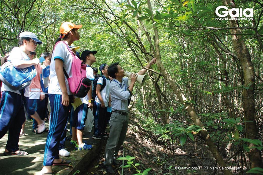 Tìm hiểu chiến lược thích nghi với điều kiện ngập mặn của cây rừng