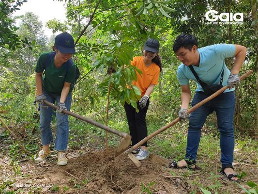 Hào hứng trồng cây làm giàu rừng.