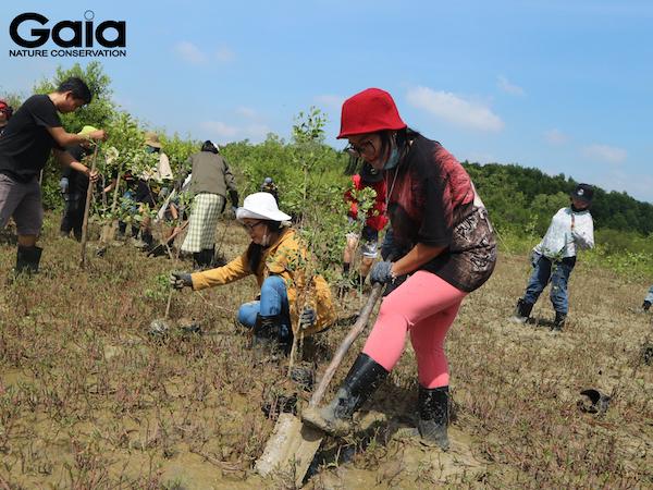 o đất để trồng cây