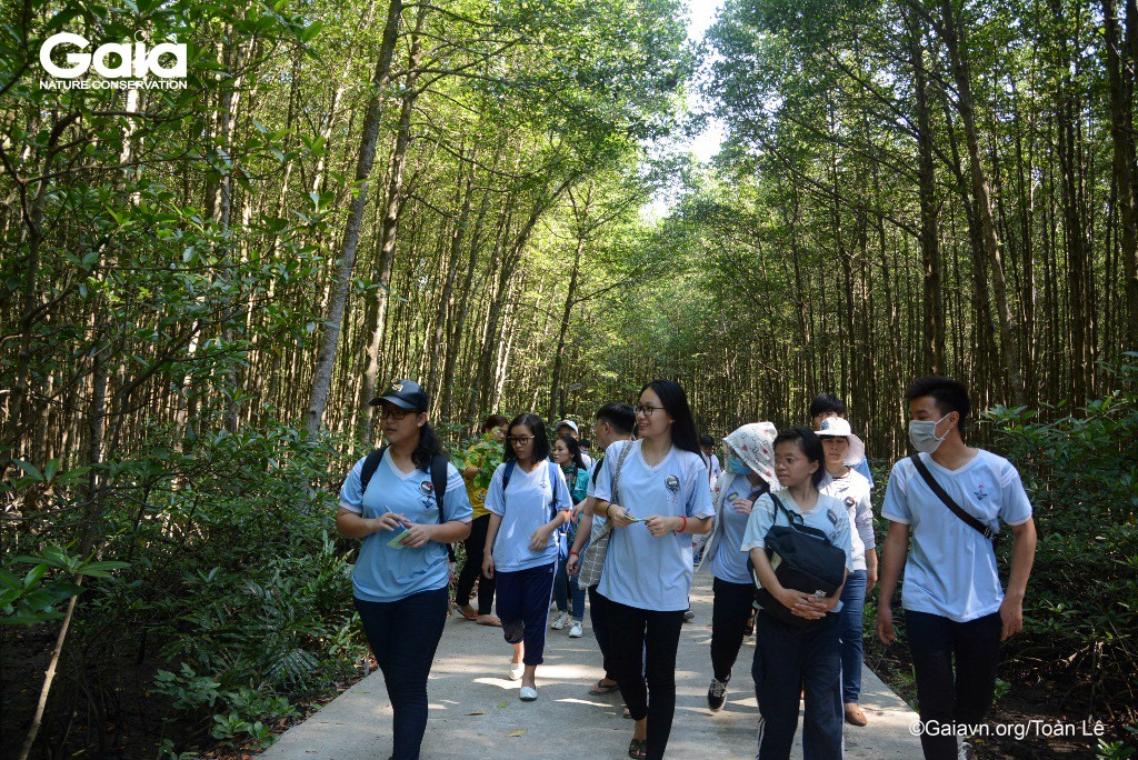 Học sinh tìm hiểu, khám phá rừng ngập mặn