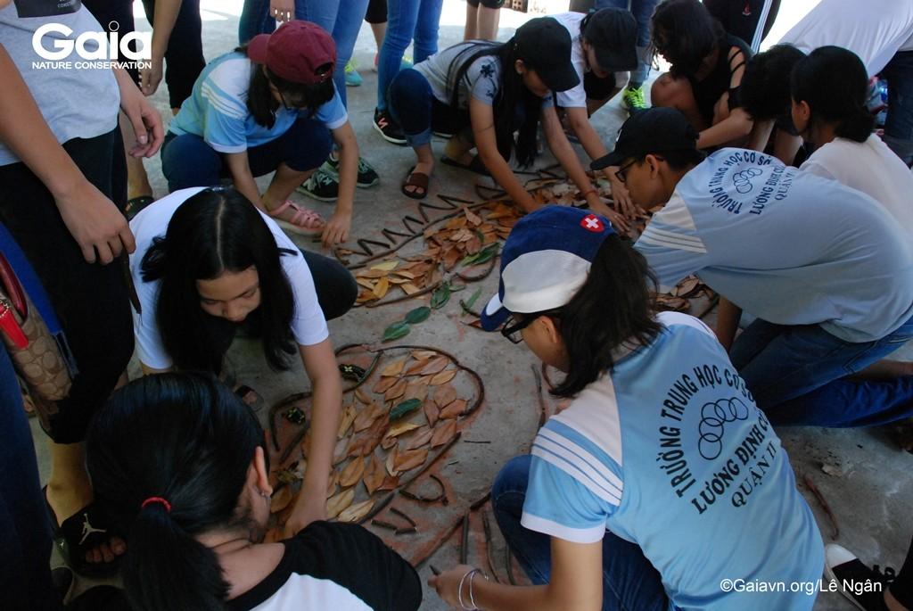 Học sinh xếp mô hình chức năng của rừng ngập mặn.