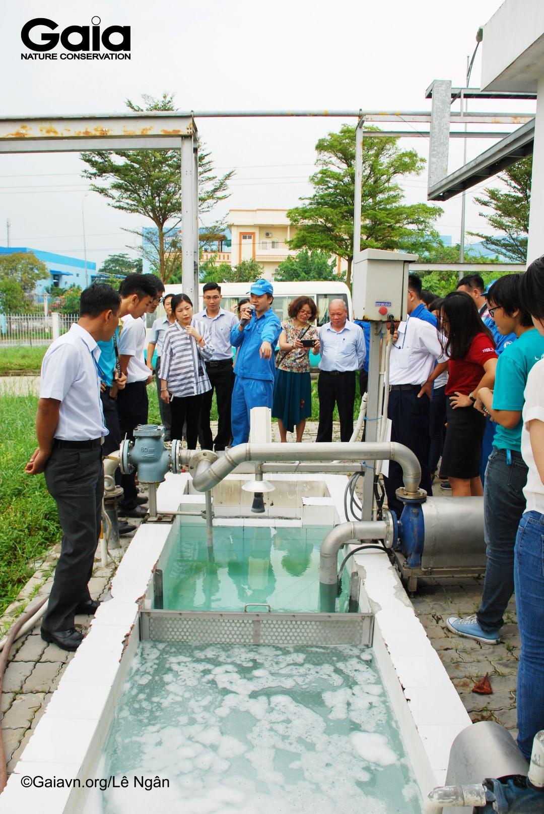 Nước thải của Siêu nhà máy sữa đạt chuẩn loại A trước khi thải ra môi trường.