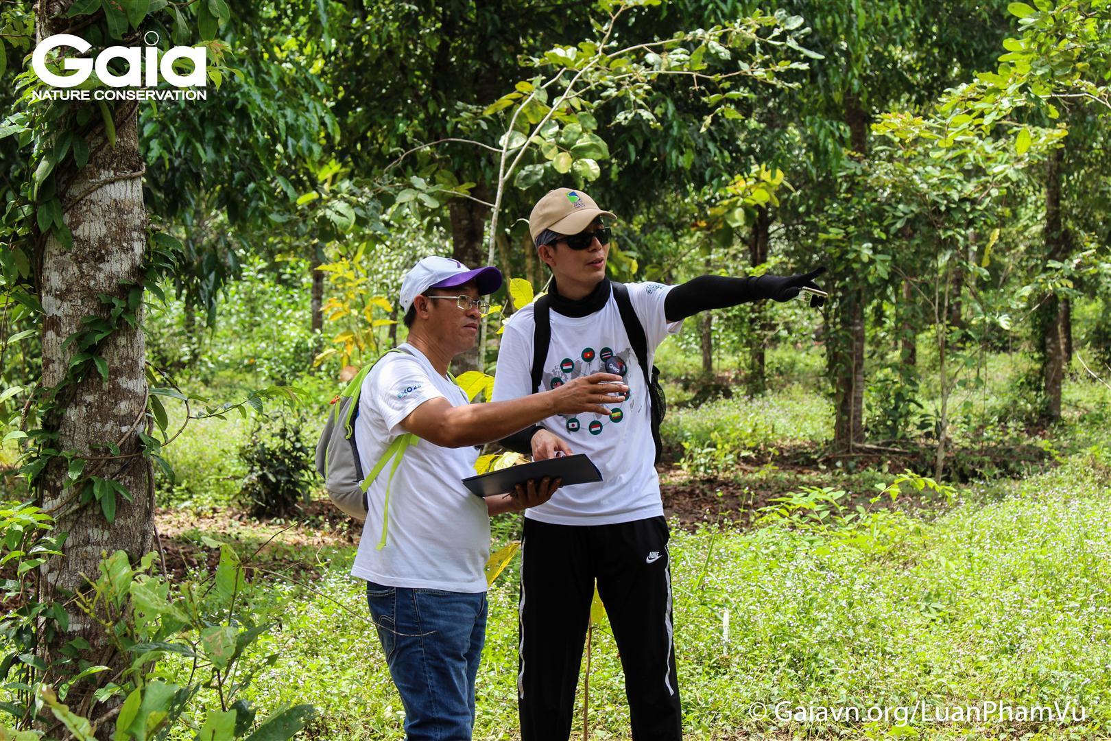 Say mê bàn luận điểm chụp ảnh giám sát rừng.