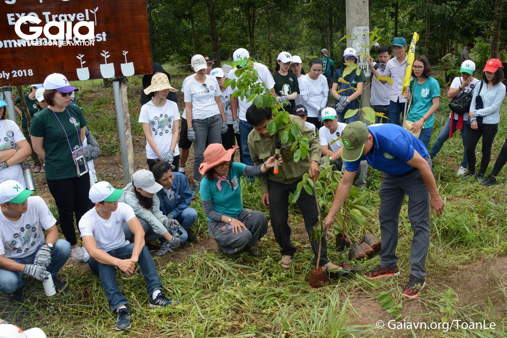 Chăm chú lắng nghe hướng dẫn trồng cây rừng.