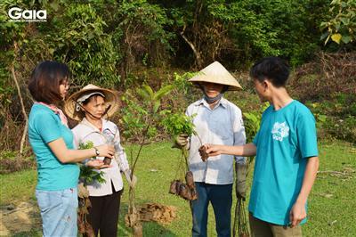 Trao đổi, thống nhất kỹ thuật trồng cây tại Xuân Liên
