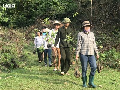 Háo hức vận chuyển cây tới khu vực trồng cây.