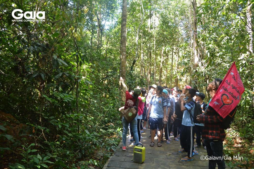 Học sinh tìm hiểu các tầng tán rừng tự nhiên.