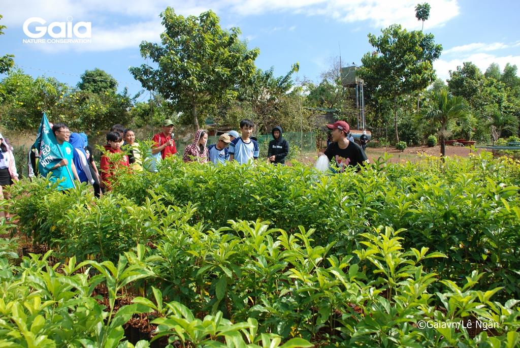 Học sinh tưới cây tại Vườn ươm cây rừng
