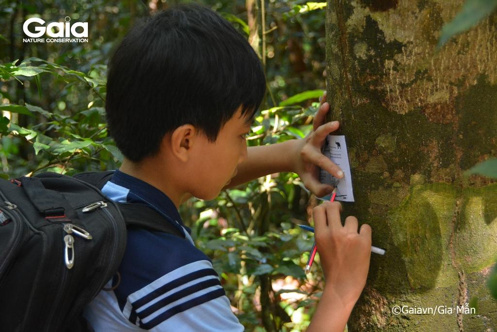 Học sinh lấy dấu vỏ cây và hoàn thành các thử thách.
