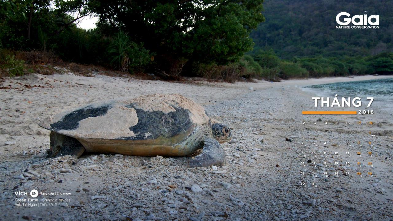 Lịch Gaia 2018 - Động vật hoang dã quý hiếm